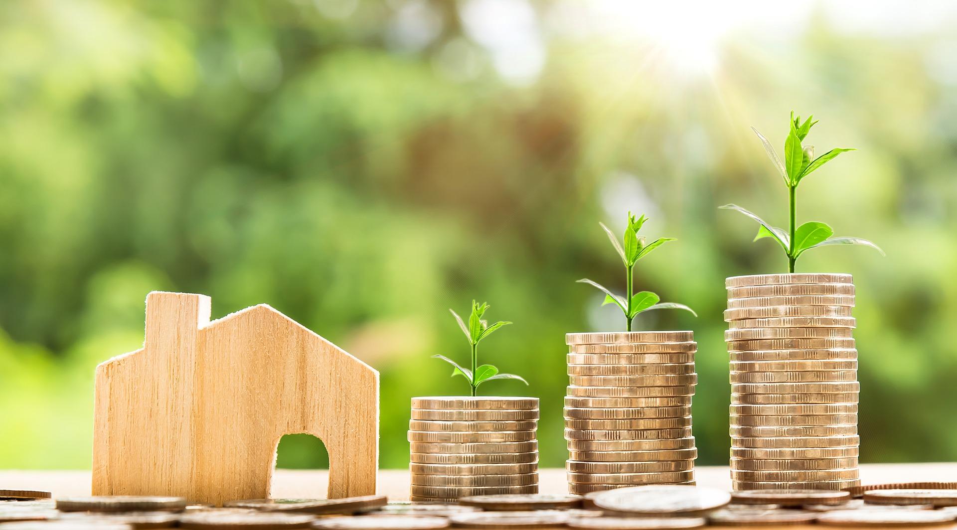 EL CONFIDENCIAL - El Tesoro trabaja para que el nuevo Gobierno pueda emitir bonos verdes en 2020 - 16.10.19