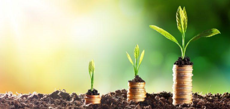 El principal objetivo del capitalismo regenerativo es generar un crecimiento en la riqueza económica, social y ambiental del mundo para así conseguir un desarrollo sostenible.