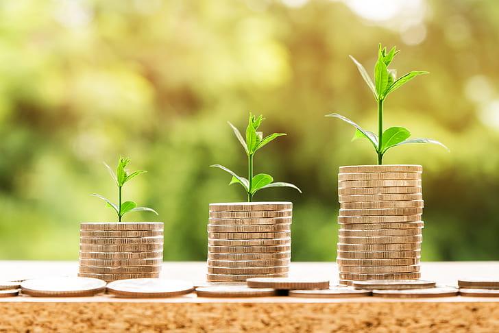 Europa necesita una estrategia de financiación sostenible más ambiciosa