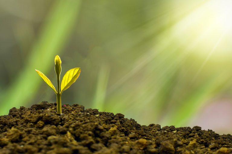 ¿Qué son las finanzas sostenibles?