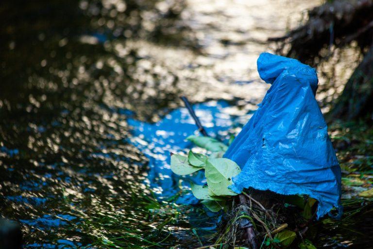 Día Internacional Libre de Bolsas de Plástico