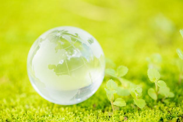 Superar la crisis económica gracias a la recuperación verde