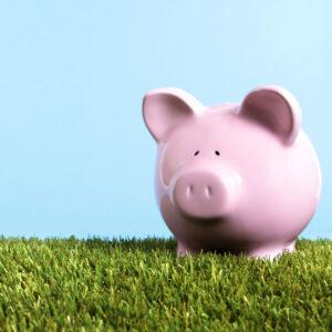 Te damos los mejores consejos para ayudar a tu bolsillo y al planeta, con 5 formas de ahorro en tu día a día